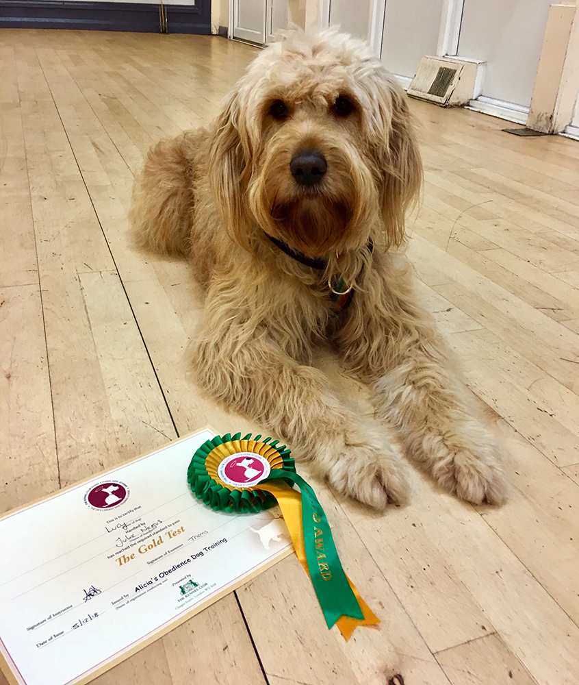 Lucy with her certificate